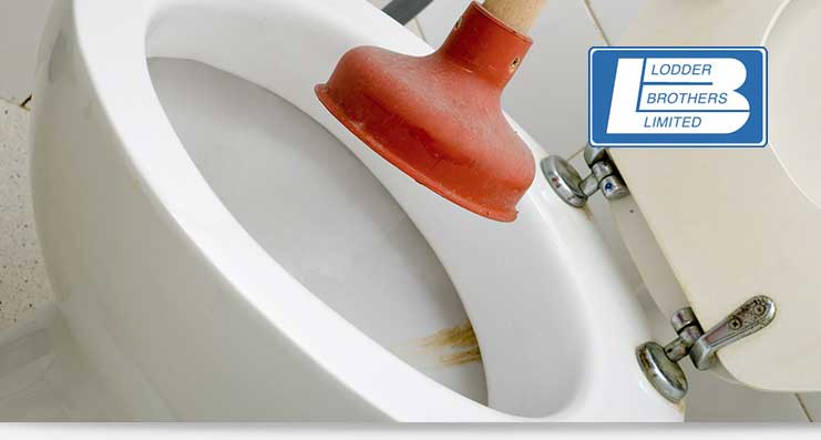 clogged toilet repair services in Guelph, Waterloo and Kitchener, ON